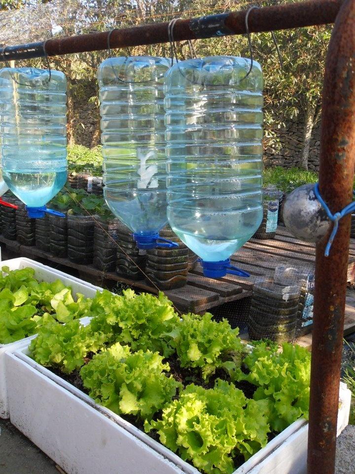 13 ideas para cuidar agua y ahorrarla de una manera creativa for Sistemas de ahorro de agua