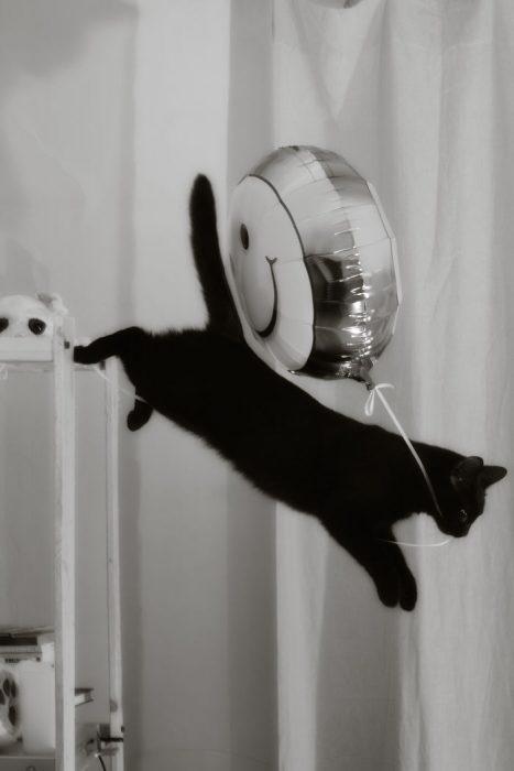 Me llevo este globo