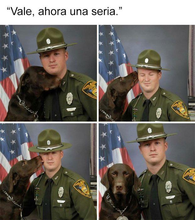 perrito serio
