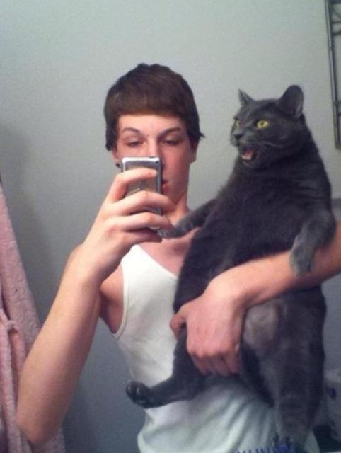 toqueteando al gato