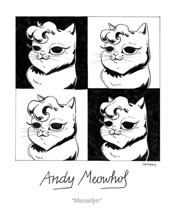 Andy Meowhol