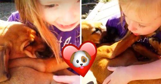 Cover Niña le canta a su perro hasta dormirlo y se vuelve viral