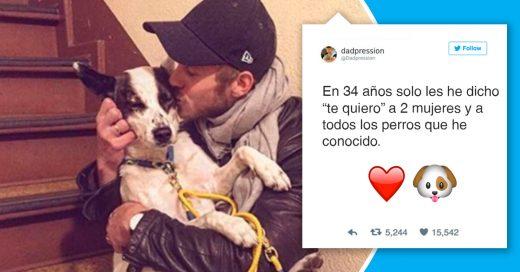 Cover Veces en que tu perro ha protagonizado Twitter