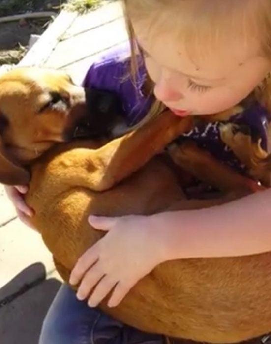 Niña le canta su perrito