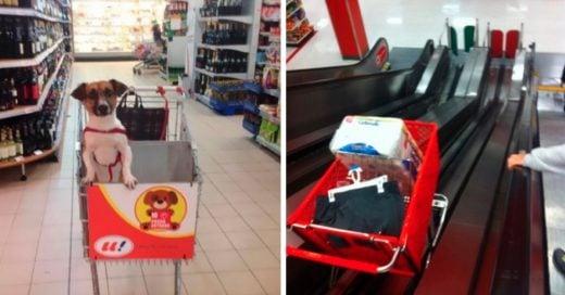 Cover supermercado que hacen que las compras sean más divertidas
