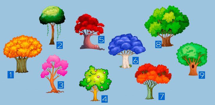 9 árboles
