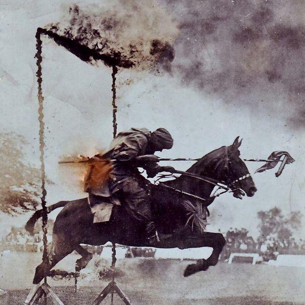 abuelo caballo