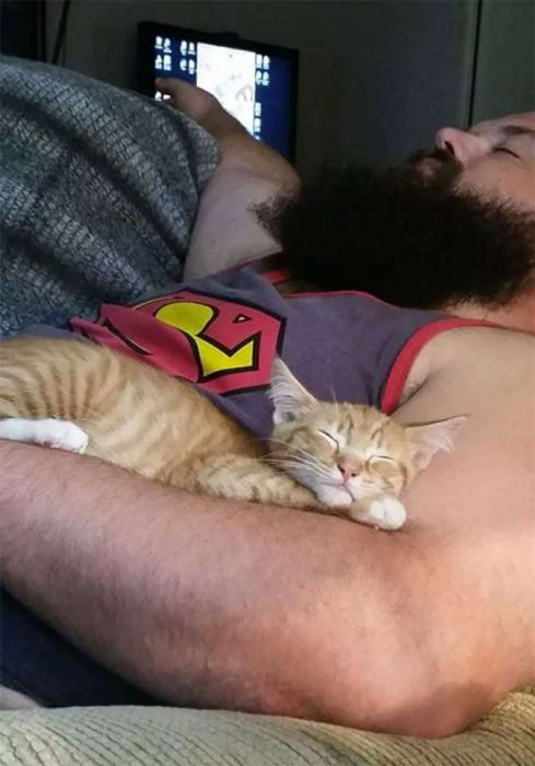 Personas a las que les gustan los gatos