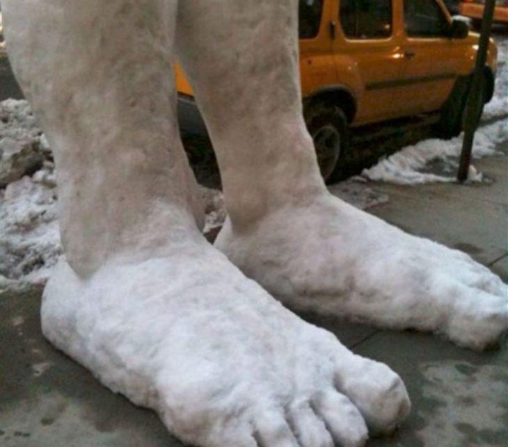 pies nieve