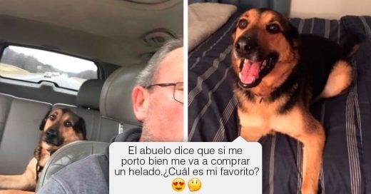 Cover Esta mujer descubrió que su papá es el mejor niñero para su perro