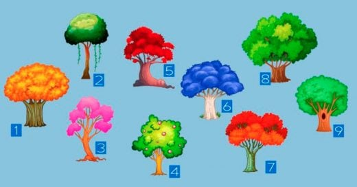 Cover Elige un árbol para saber qué cambios te depara el Año Nuevo