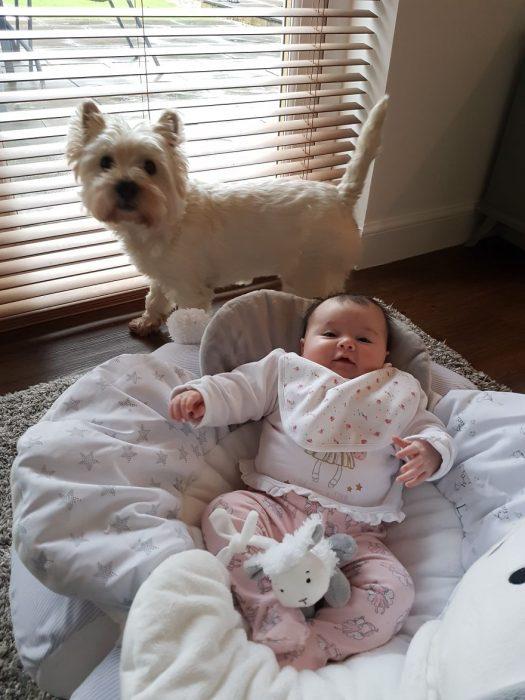perrita y bebé