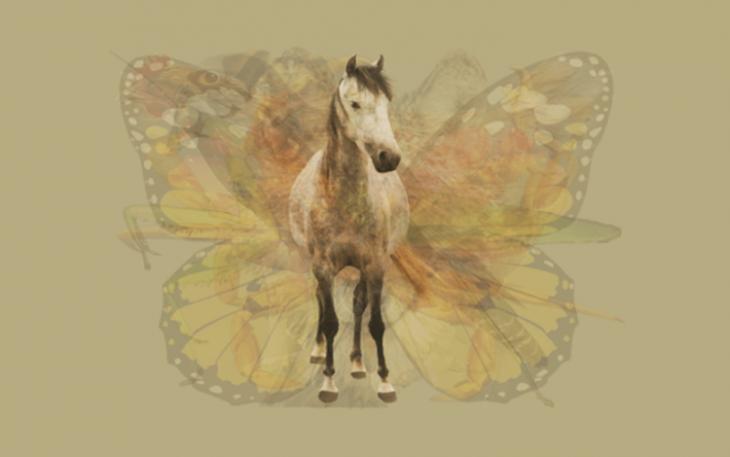 Quéanimalves caballo