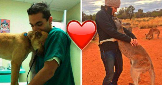 Cover 13 animales que agradecen a sus salvadores humanos