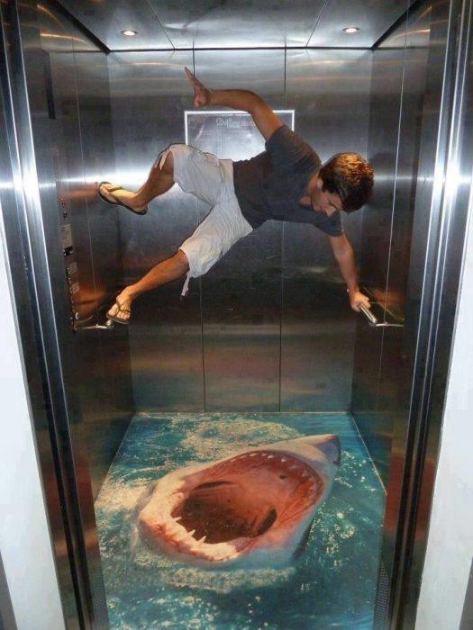 tiburón en elevador