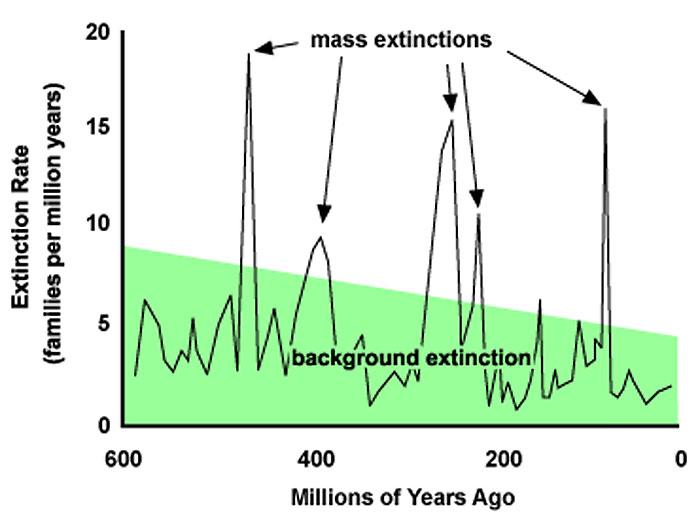 extincion masiva
