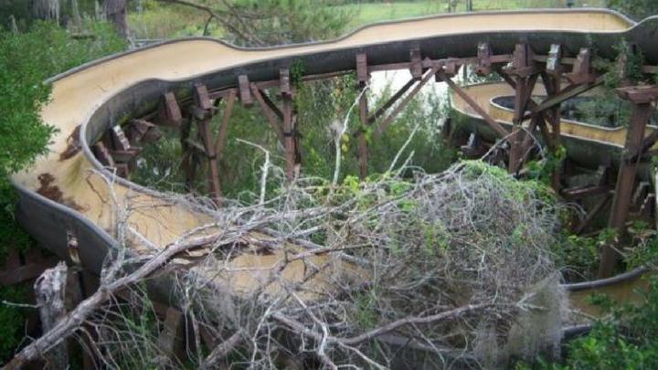 estructura de madera cubierta por la malesa
