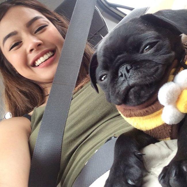 selfie con pug