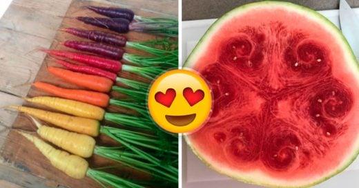 Cover 15 imágenes de comida que te dejarán satisfecho sin probarla