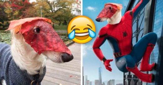 Cover Veces en las que agradecimos al mundo por la creación del Photoshop