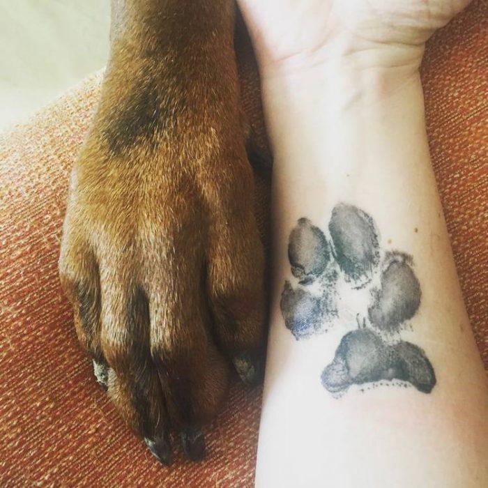 pata de perro color cafe juanto a un brazo con una huella