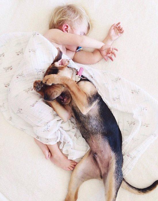 niño y perrito - cara cubierta