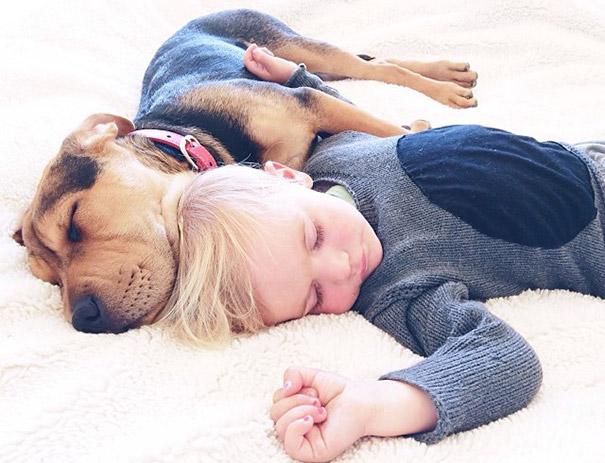 niño y perrito dormidos