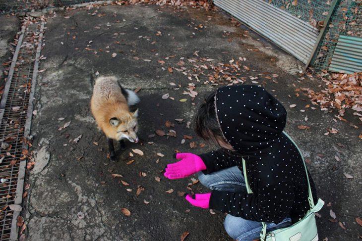 Niña y zorro