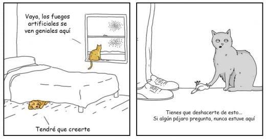 Cover diferencias entre perros y gatos