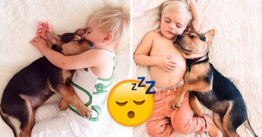 Cover Bebé y cachorro toman sus siestas juntos y es lo más tierno que verás hoy
