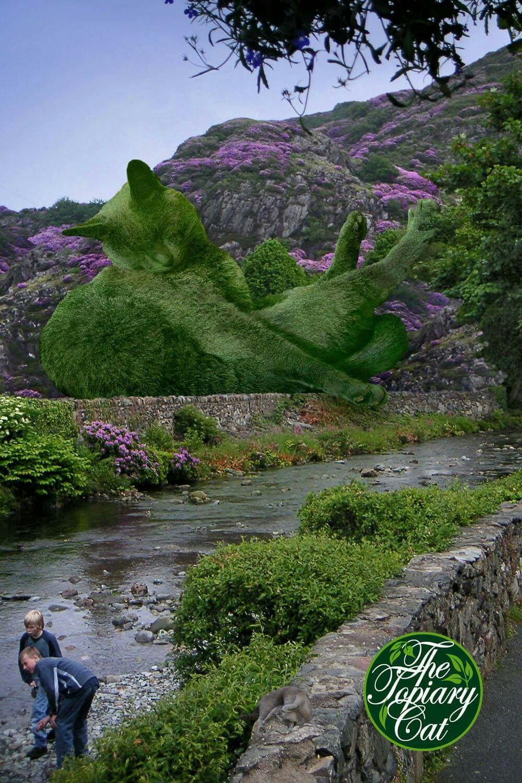 15 esculturas de arbustos con figuras de grandes gatos for Como ahuyentar gatos del jardin