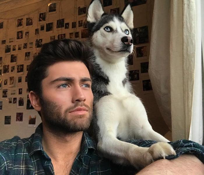 Cada perro se parece a su dueño recreo viral