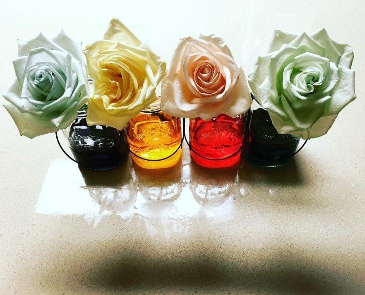 Rosas en vasos con colorante