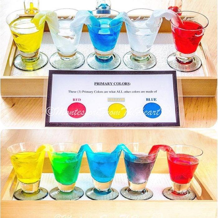 experimento de vasos con agua de colores y papel
