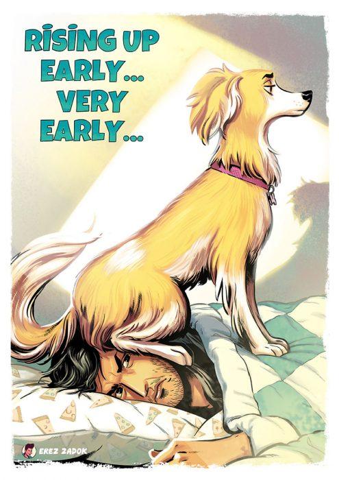 perro despierta temprano