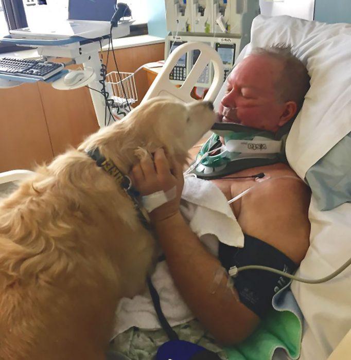 perrito y señor en el hospital