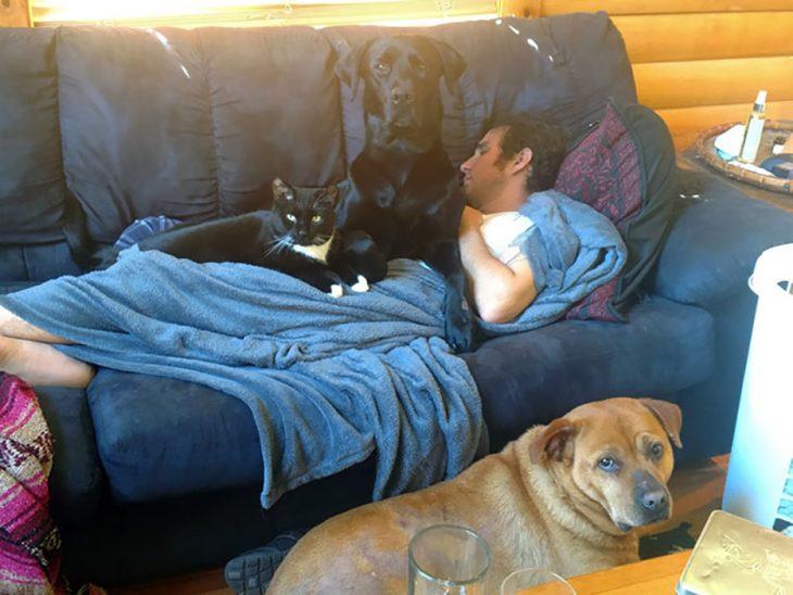 hombre en sofá con dos perros y un gato