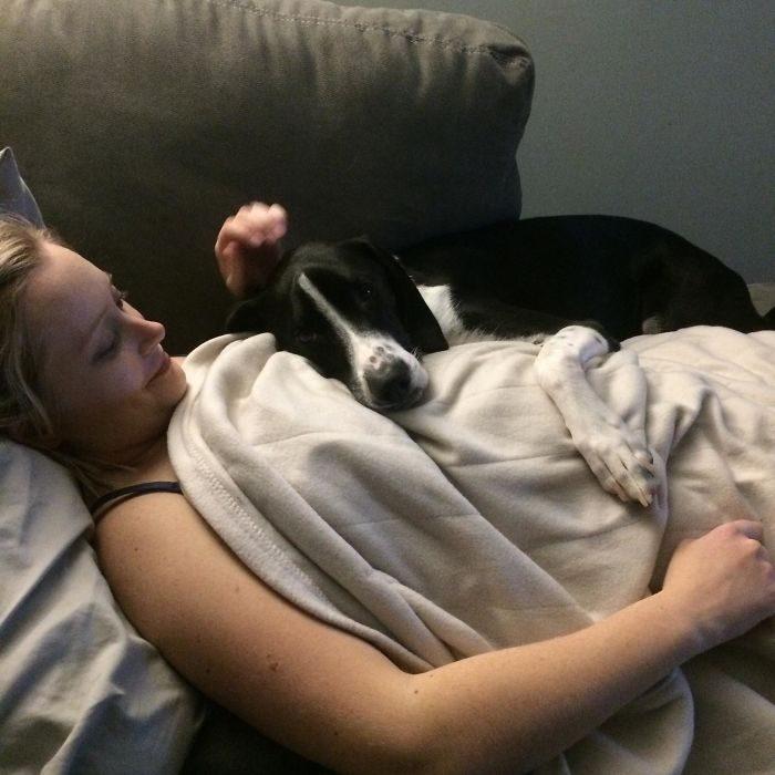 mujer embarazada con un perro