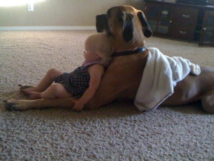 perro y niña viendo televisión