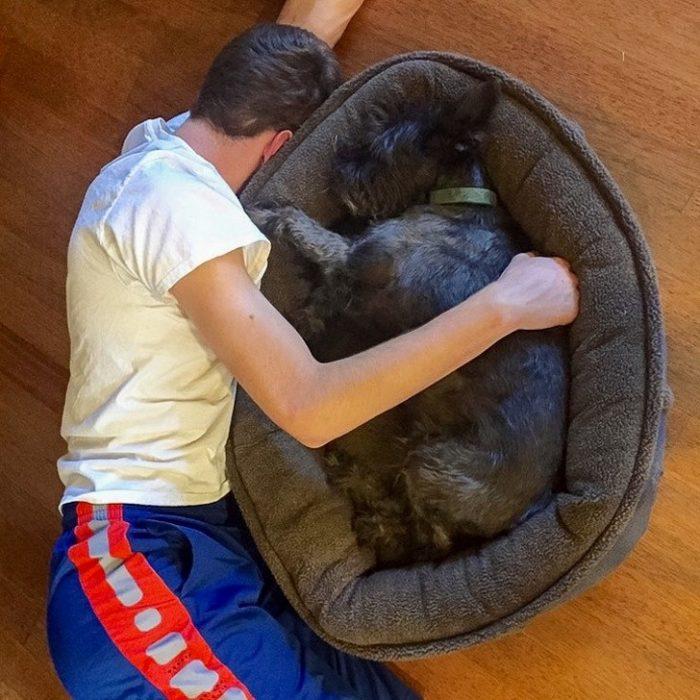 abrazo a un perro en su camita