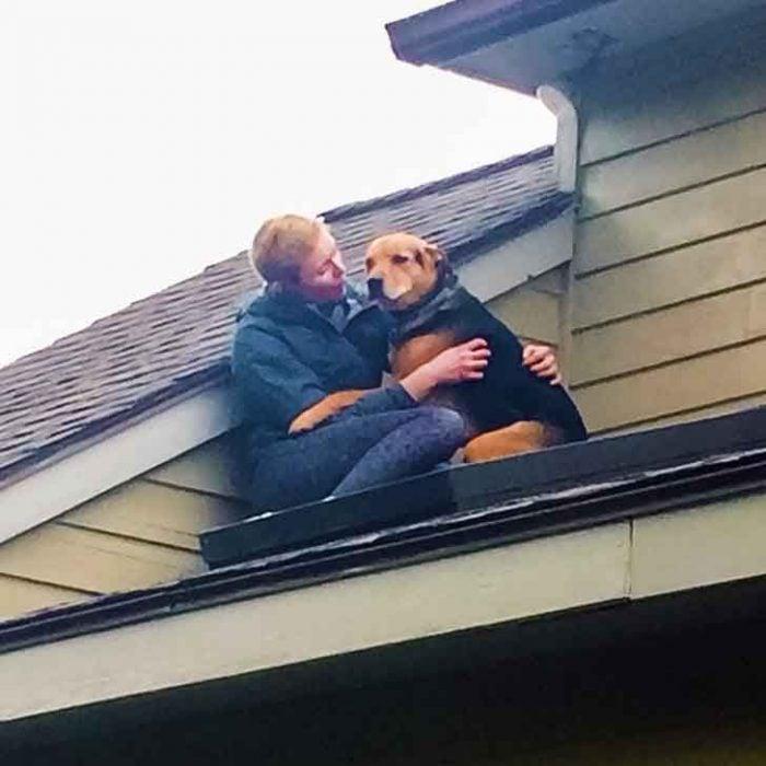 perrito en el techo abrazado