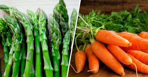 Cover Vegetales para comenzar tu propio huerto en casa