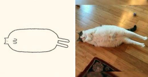 Cover Retratos de gatos torpes con un solo trazo