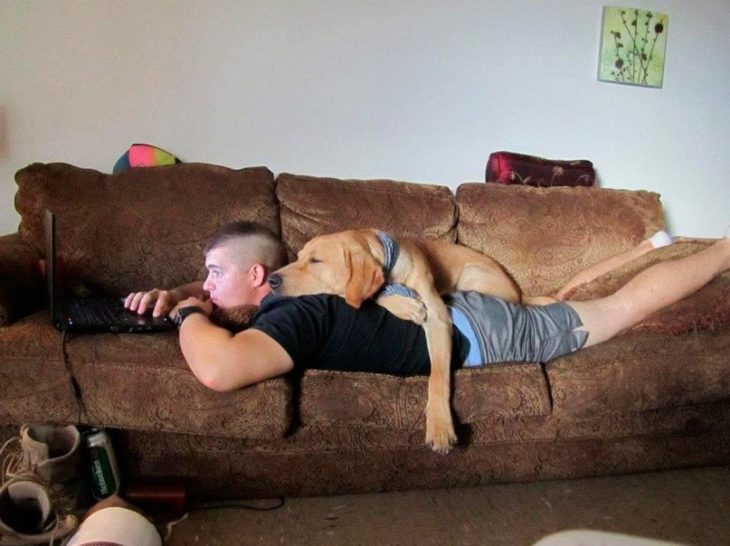 perrito descansa sobre su amo