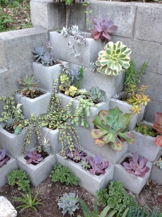 macetas de bloques de cemento