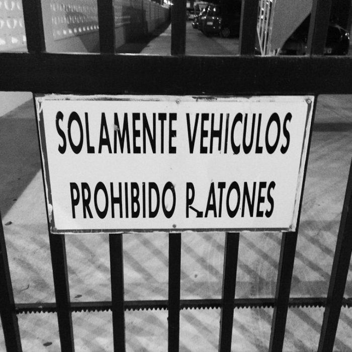 cartel prohibido estacionar ratones