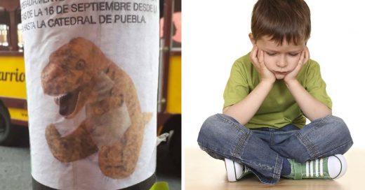 Cover Niño pide ayuda para encontrar su dinosaurio de peluche