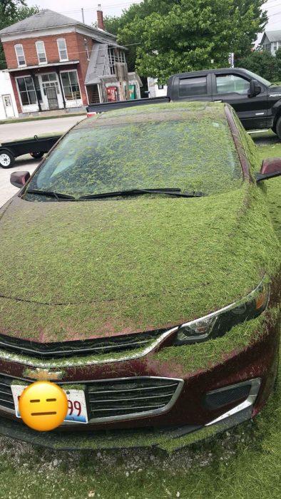 coche lleno de musgo
