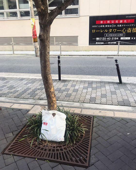 bolsa en un árbol