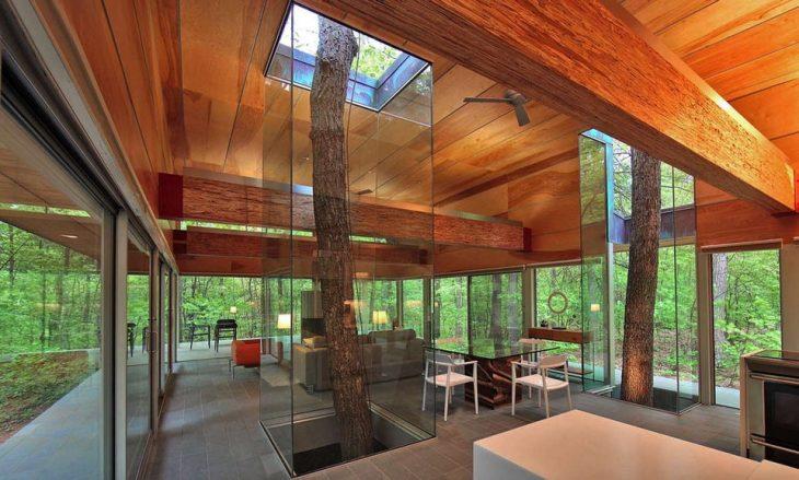 Casa de vidrio en pleno bosque, Virginia, estados Unidos